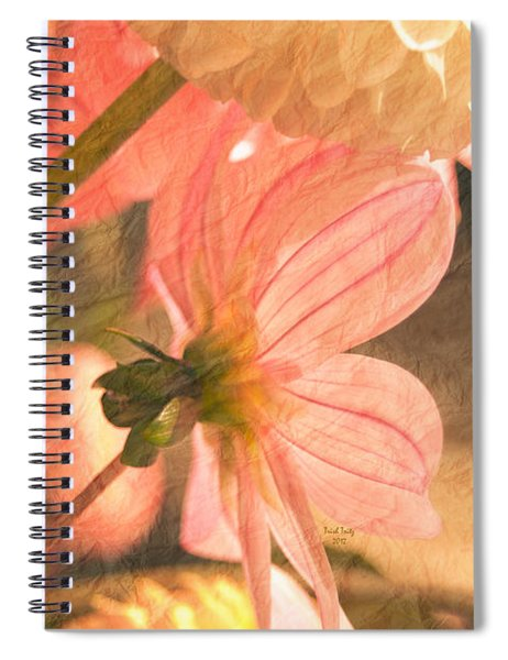 Gentleness Spiral Notebook