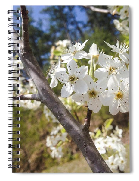 Georgia Blossoms Spiral Notebook