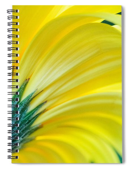 Spiral Notebook featuring the photograph Gerber Daisy by Garvin Hunter