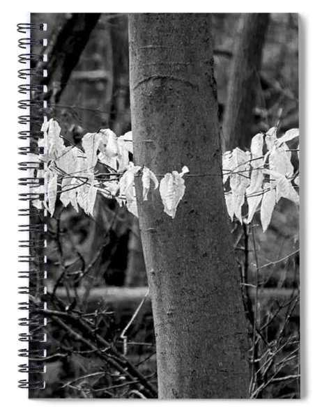 Ghost Leaves Spiral Notebook