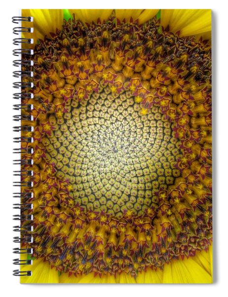 Ghost Sunflower Spiral Notebook