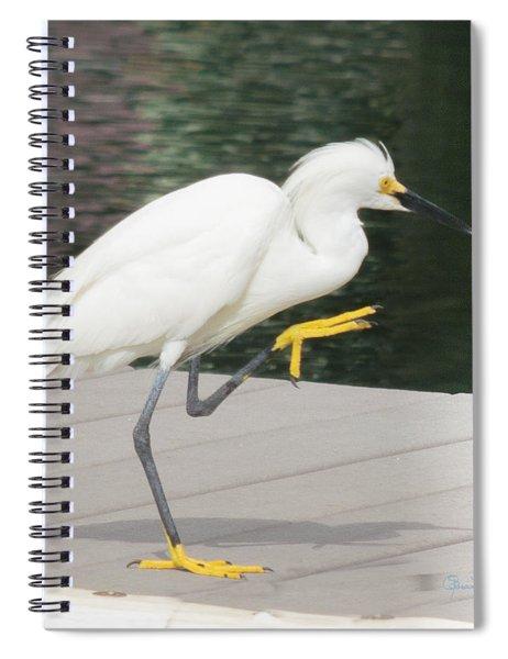 Gimmie Five Errr Four Spiral Notebook