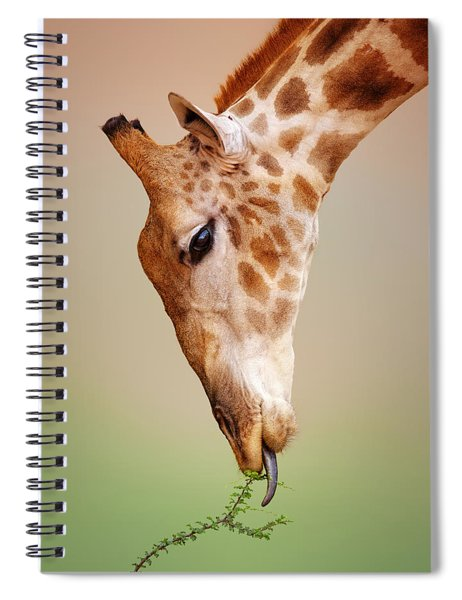 Giraffe Eating Close-up Spiral Notebook