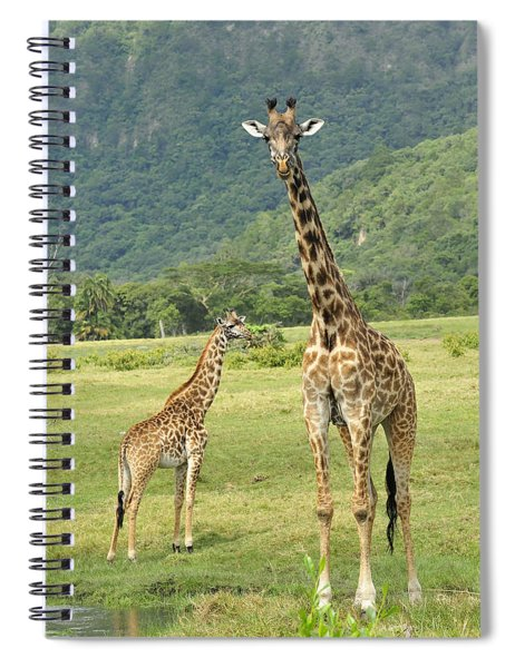 Giraffe Mother And Calftanzania Spiral Notebook