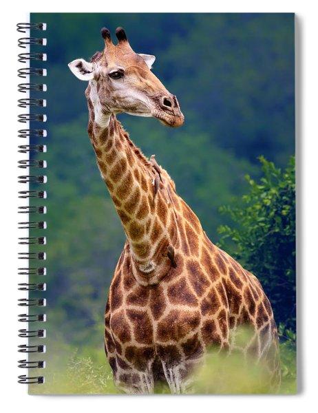 Giraffe Portrait Closeup Spiral Notebook