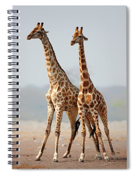 Giraffes Standing Together Spiral Notebook