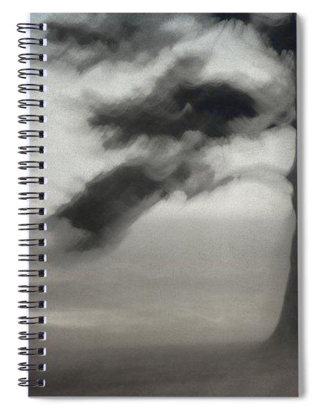 Glimpse Of Coastal Pine Spiral Notebook
