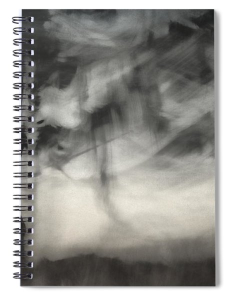 Glimpse Of Coastal Pines Spiral Notebook