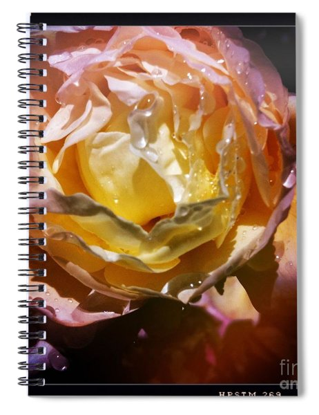 Glistening Rose Spiral Notebook