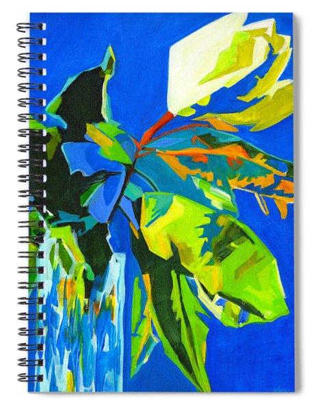 Glorious Spiral Notebook