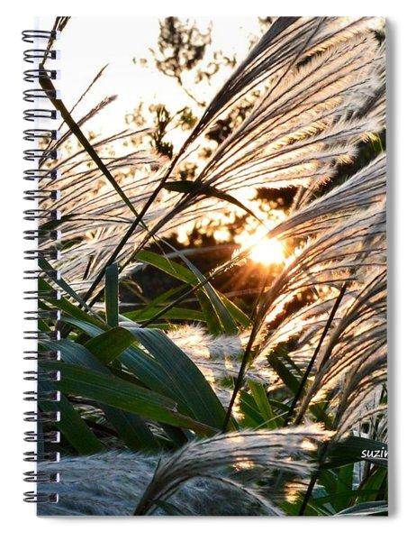 Glowing Pampas Spiral Notebook
