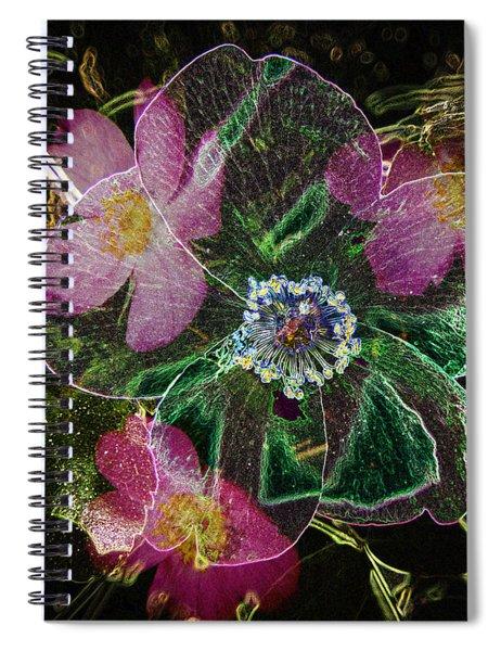 Glowing Wild Rose Spiral Notebook