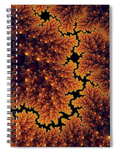 Golden And Black Fractal Universe Spiral Notebook