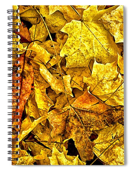Golden Colors Of Fall Spiral Notebook