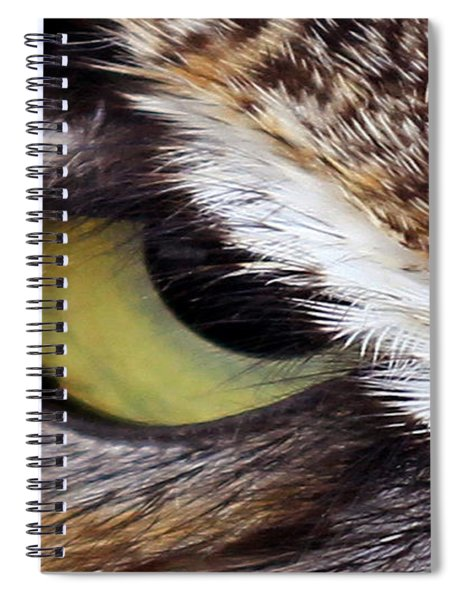 Golden Eye  Spiral Notebook