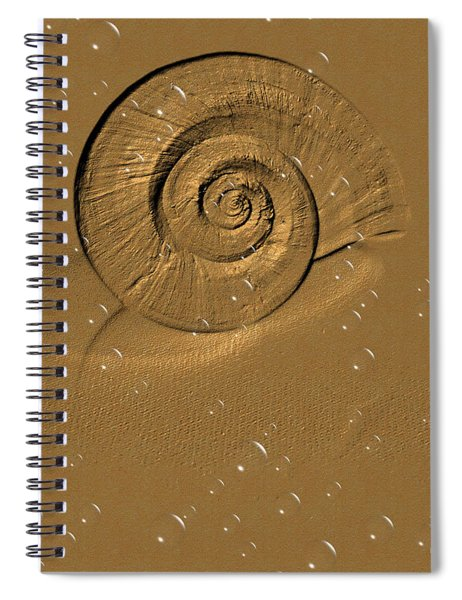 Golden Fantasy. Shell. Abstarct. Beautiful Home Collection 2015 Spiral Notebook