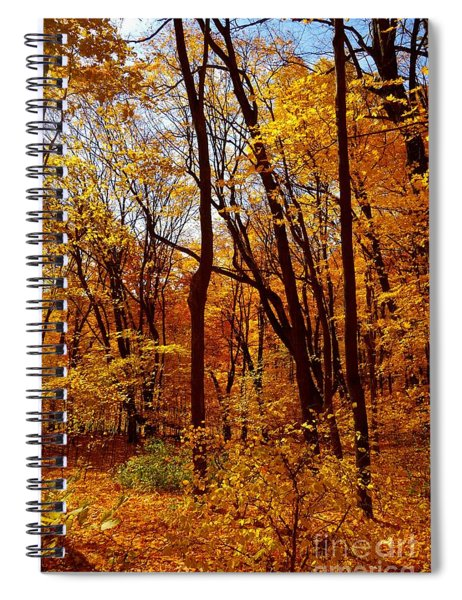 Golden Splendor Spiral Notebook