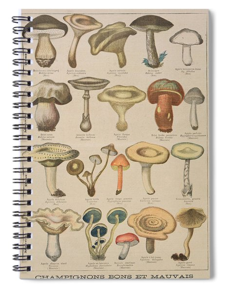 Good And Bad Mushrooms Spiral Notebook