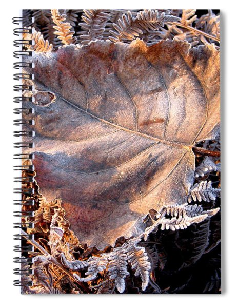 Graced By Frost Spiral Notebook