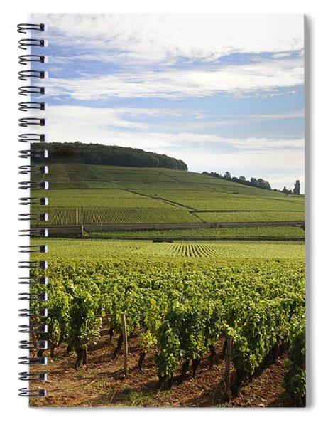 Grand Cru And Premier Cru Vineyards Of Aloxe Corton. Cote De Beaune. Burgundy. Spiral Notebook