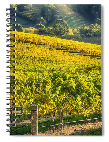 Grape Expectations Spiral Notebook