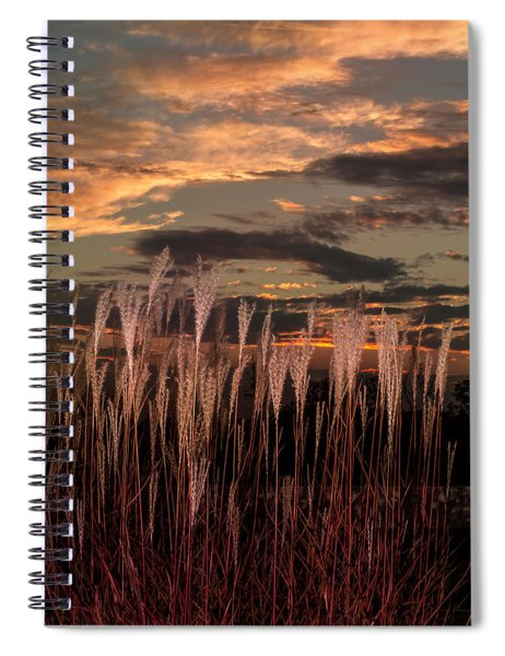 Grassy Sunset Spiral Notebook