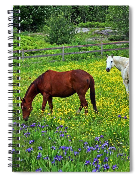 Grazing Amongst The Wildflowers Spiral Notebook