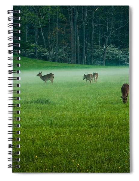 Grazing Deer Spiral Notebook