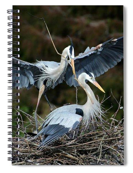 Great Blue Herons Nesting Spiral Notebook
