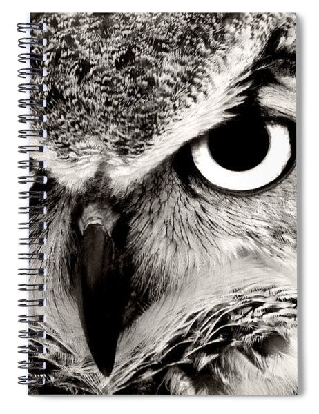 Great Horned Owl In Black And White Spiral Notebook