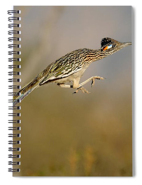 Greater Roadrunner Leaping Spiral Notebook