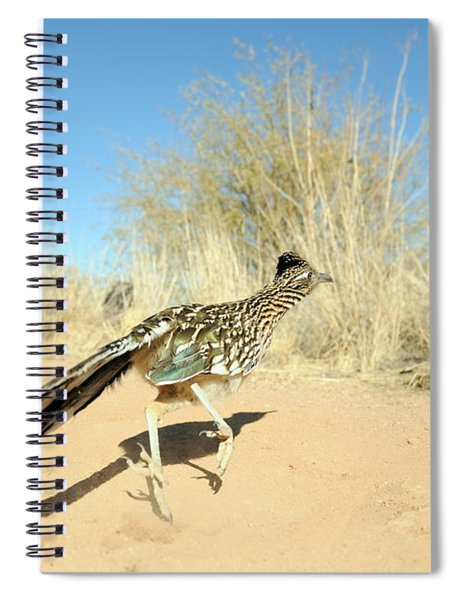 Greater Roadrunner Running Spiral Notebook