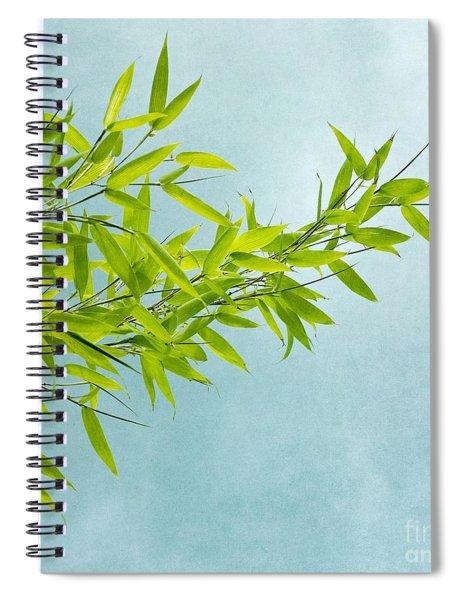 Green Bamboo Spiral Notebook