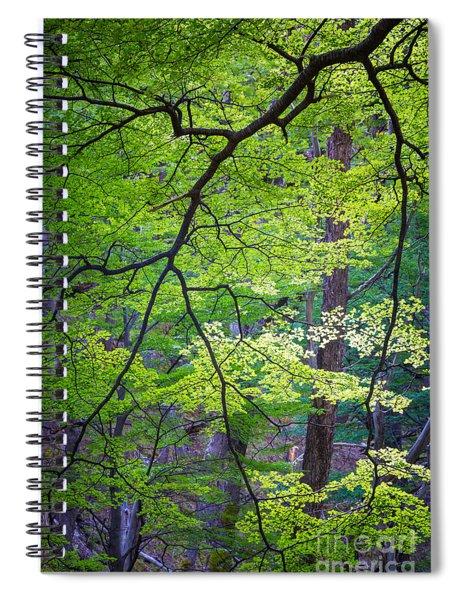Green Explosion Spiral Notebook