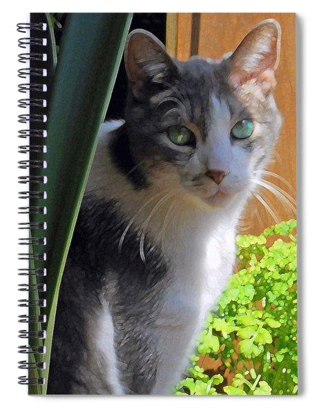 Green Eyed Cat Spiral Notebook