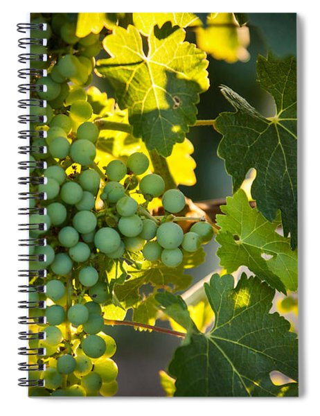 Green Grapes Spiral Notebook