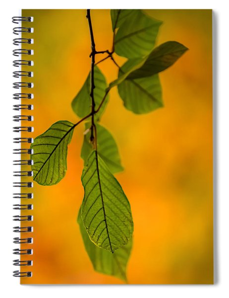Green Leaves In Autumn Spiral Notebook