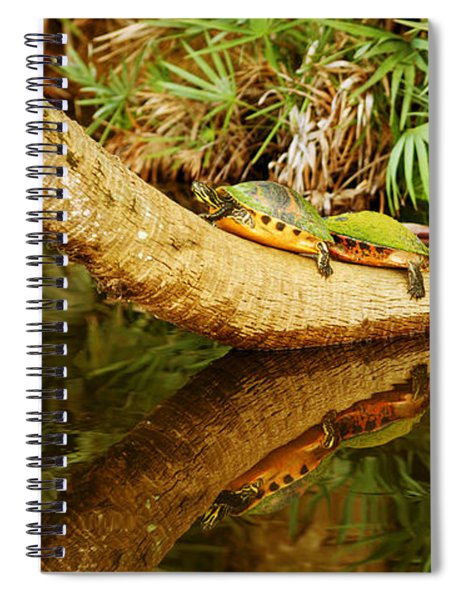 Green Turtles Chelonia Mydas On A Tree Spiral Notebook