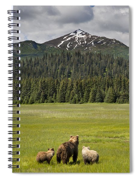 Grizzly Bear Mother And Cubs In Meadow Spiral Notebook