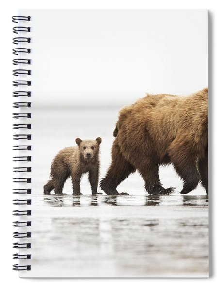 Grizzly Bear Mother And Cubs Lake Clark Spiral Notebook