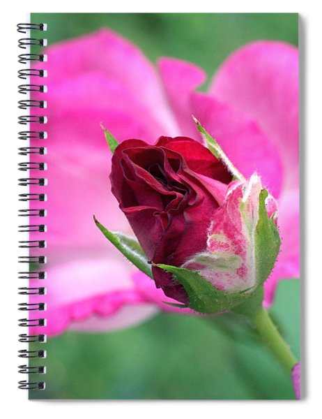 Growing Up Spiral Notebook