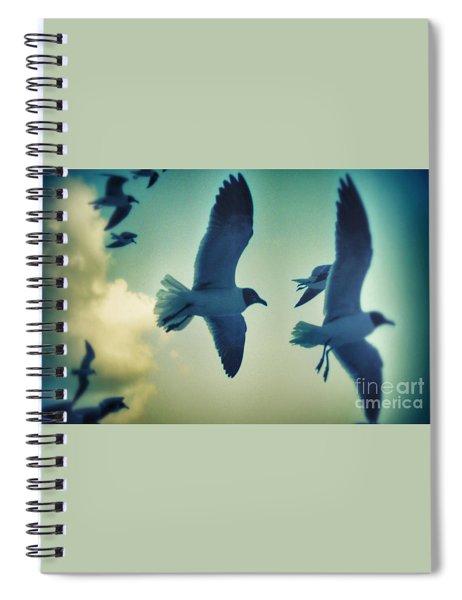 Gulls Spiral Notebook