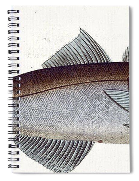 Haddock Spiral Notebook