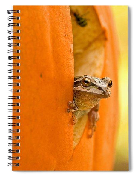 Halloween Surprise  Spiral Notebook