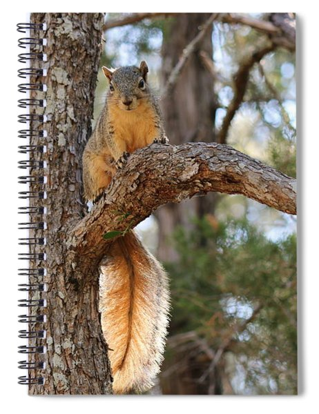 Hangin' Out Spiral Notebook