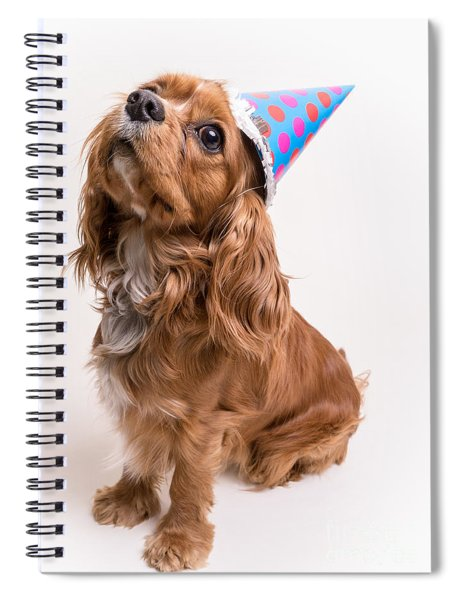 Happy Birthday Dog Spiral Notebook