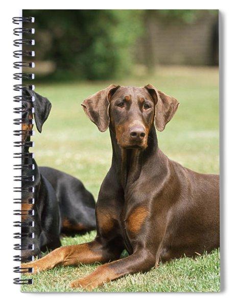Happy Dobermans Spiral Notebook