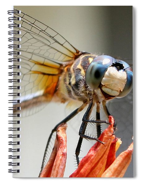 Happy Dragonfly Spiral Notebook