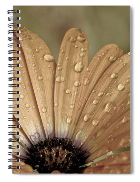 Happy To Be A Raindrop Spiral Notebook