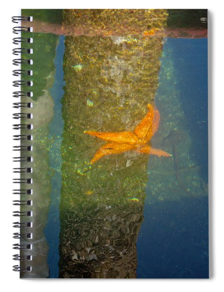 Harbor Star Fish Spiral Notebook